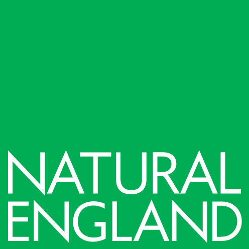 Natural England Careers Logo